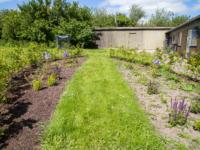 Champost jordforbedring