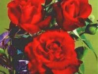 Gisselfeld barrods rose